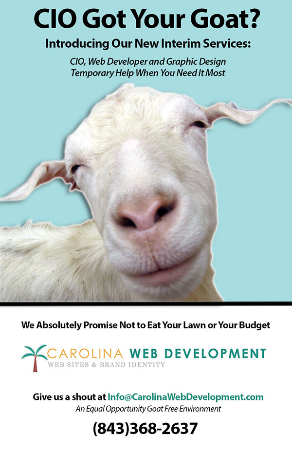 Interim Services From Carolina Web Development